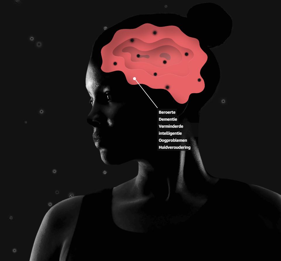 hersenen en geest
